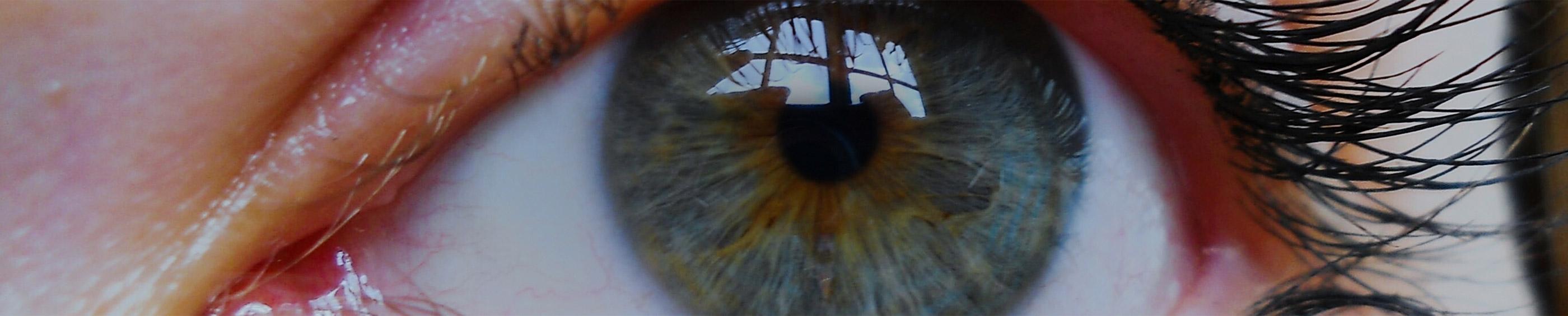 Acercamieto a ojo azul de una mujer